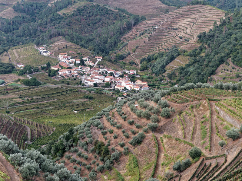 region_douro