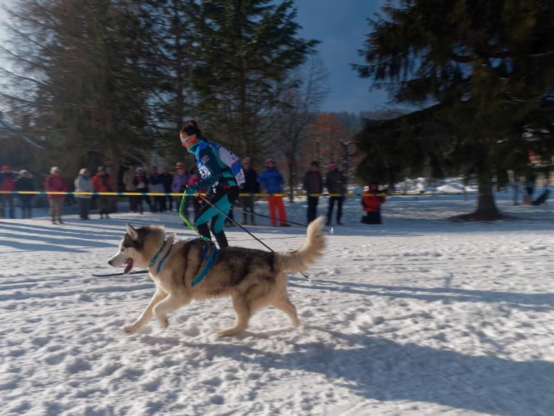 ski_joering