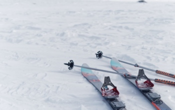 skis_srn_laponie