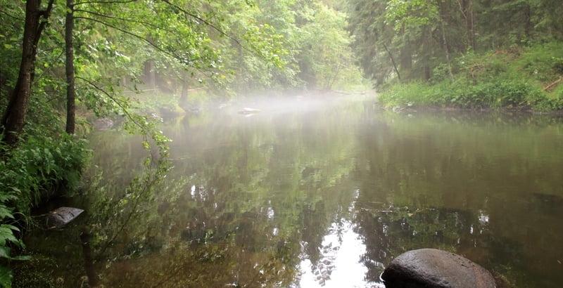 nature_estonie_taevaskoja
