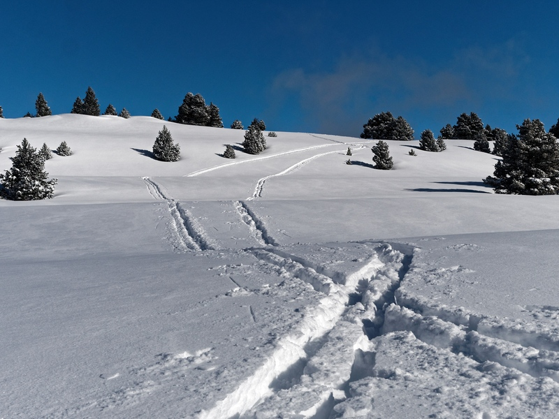 Traces de ski
