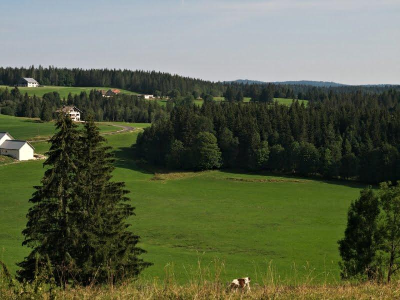 plateau_jura